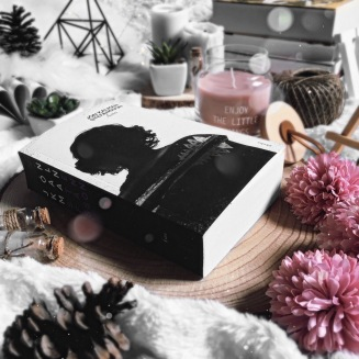 voreena_and_the_books